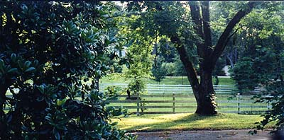 The property includes several pasture